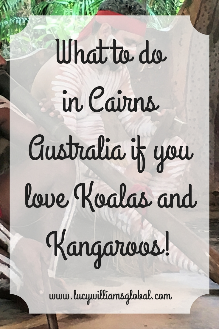 What to do in Cairns Australia if you love Koalas and Kangaroos!