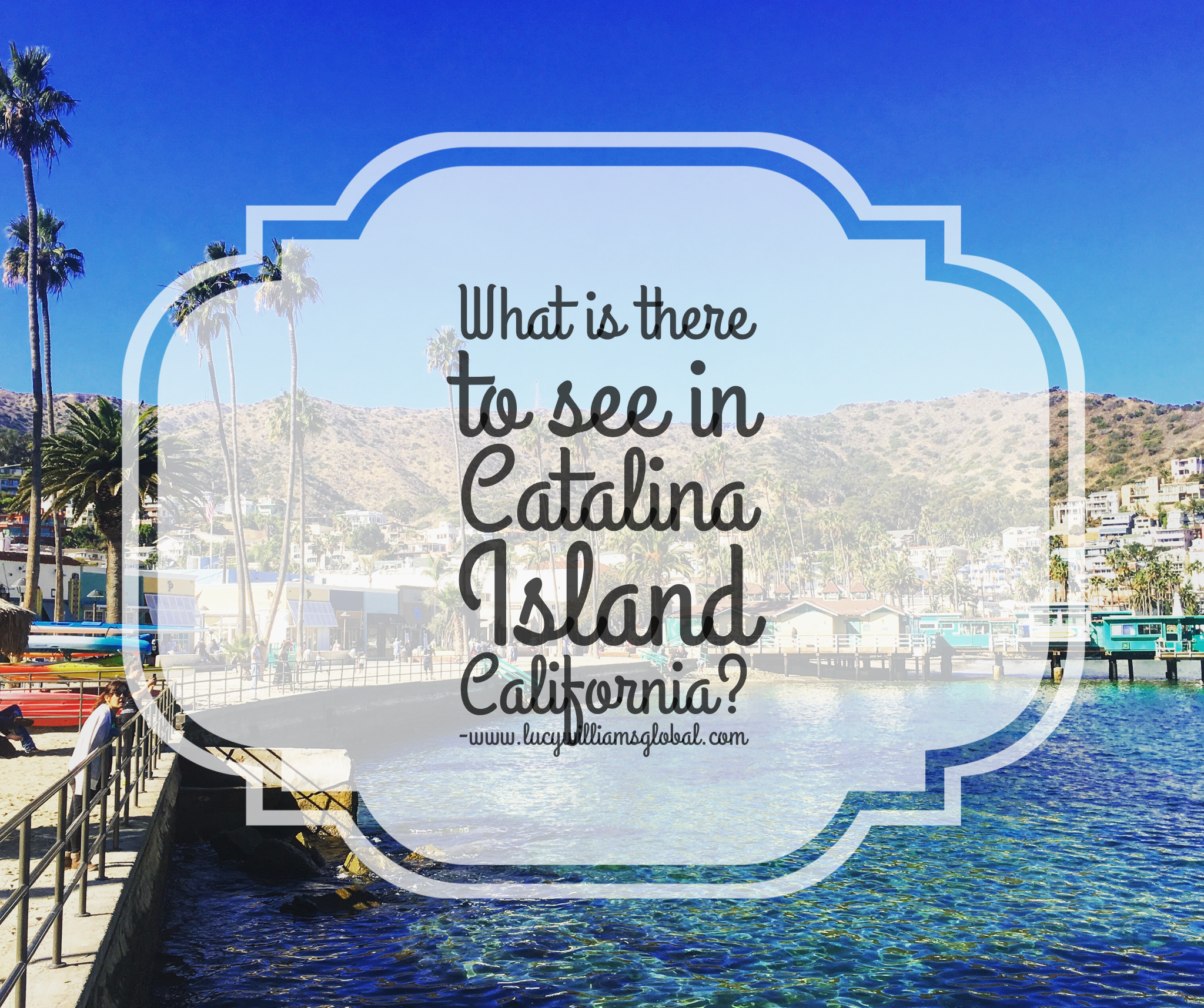 What is there to see in Catalina Island California - Lucy Williams Global